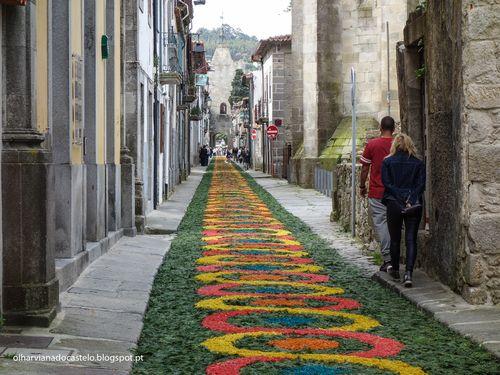 Tapetes de flores, Caminha (10)