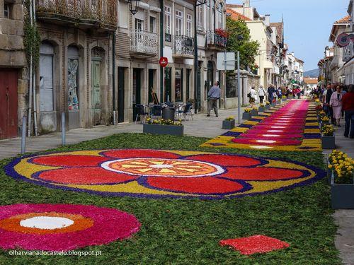Tapetes de flores, Caminha (5)
