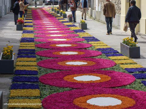 Tapetes de flores, Caminha (6)